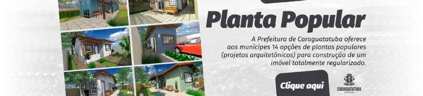 Planta Popular