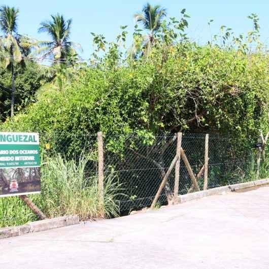 Prefeitura realiza cercamento do manguezal no Camaroeiro