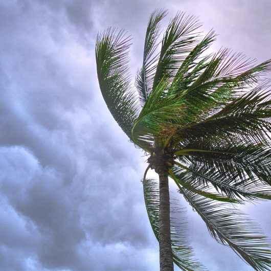 Prefeitura informa sobre previsão de chuva e ventos fortes