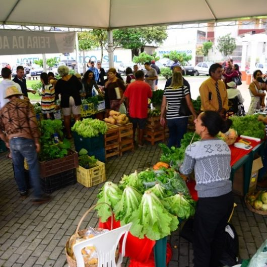 Semana de Meio Ambiente conta com Feira de Agricultura e Mutirão de Limpeza