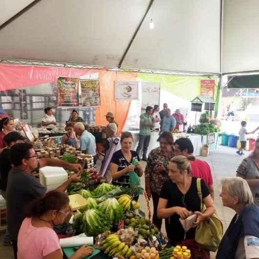 Feira da Agricultura Familiar surpreende com resultados no Festival do Camarão