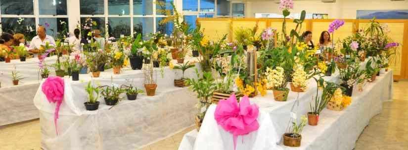 Caraguatatuba abre na sexta-feira a 41ª Exposição de Orquídeas