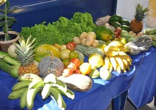 Secretaria de Educação de Caraguatatuba abre Chamamento Público para fornecedores da Agricultura Familiar