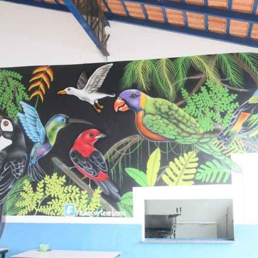 EMEF Maria Moraes de Caraguatatuba transforma paredes em obra de arte