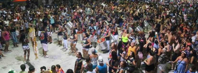 Bloco do Urso invade Avenida do Samba com sua missão solidária
