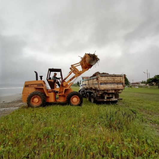 Prefeitura de Caraguatatuba realiza trabalho de limpeza de praias após chuvas