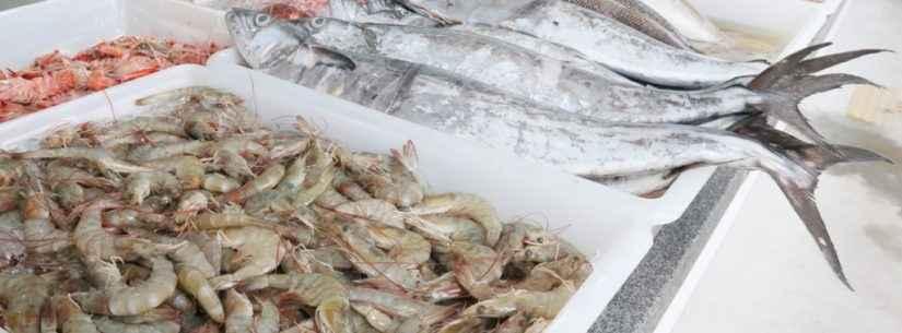 Entreposto de Pesca do Camaroeiro segue regras sanitárias na venda de pescado na Semana Santa