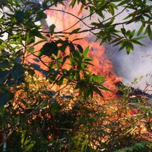 Tempo seco e imprudência são riscos para aumento da incidência de queimadas