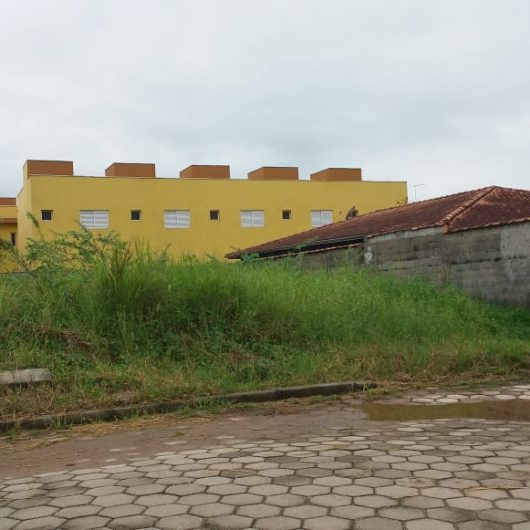 Prefeitura de Caraguatatuba intensifica fiscalização em lotes com matagal e calçadas irregulares