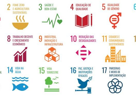 Petrobras e PNUD têm inscrições abertas para curso sobre desenvolvimento sustentável