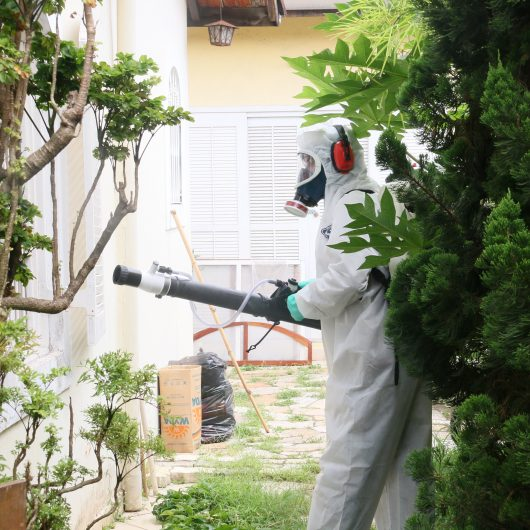CCZ faz nebulização contra dengue em Caraguatatuba
