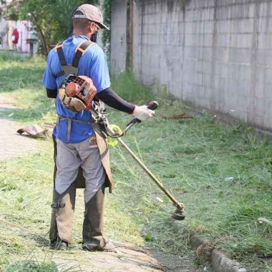 Prefeitura de Caraguatatuba convoca mais 35 bolsistas do PEAD para contratação esta semana