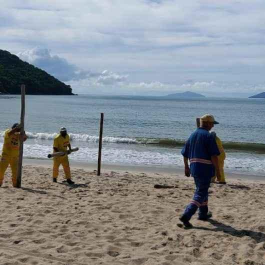 1Prefeitura de Caraguatatuba inicia 'Operação Praia Limpa' e retira pontaletes da Martim de Sá