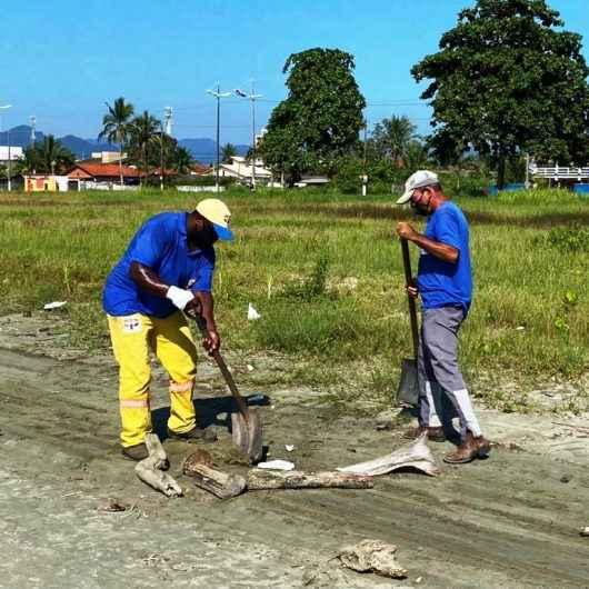 Mutirão de limpeza de praias recolhe cerca de 600 toneladas de material em Caraguatatuba