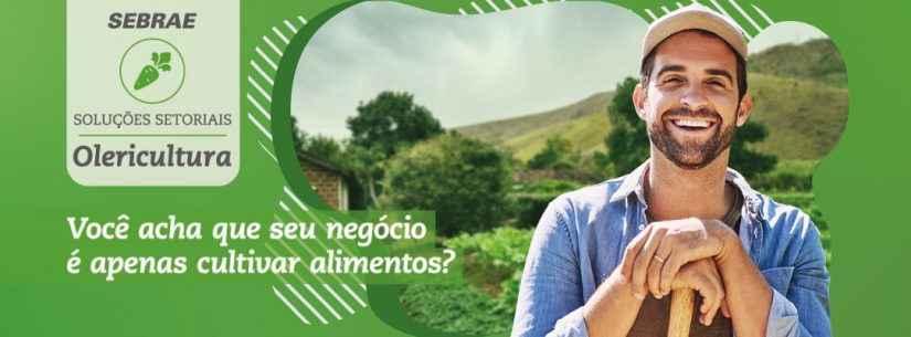 Sebrae abre capacitação gratuita em Olericultura para produtores rurais
