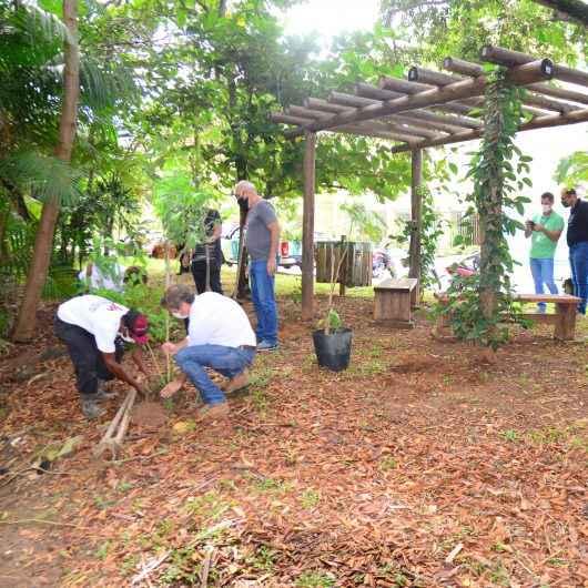 Prefeitura de Caraguatatuba realiza plantio de mudas nativas no Jardim Primavera e na Martim de Sá