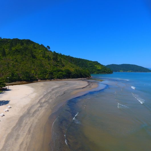 Prefeitura de Caraguatatuba e ONG Ceepam organizam ação para despoluição do Rio Tabatinga