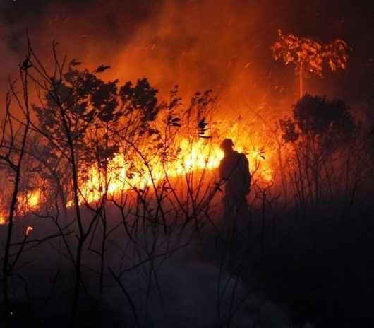 Prefeitura de Caraguatatuba alerta para queimadas na zona urbana do município