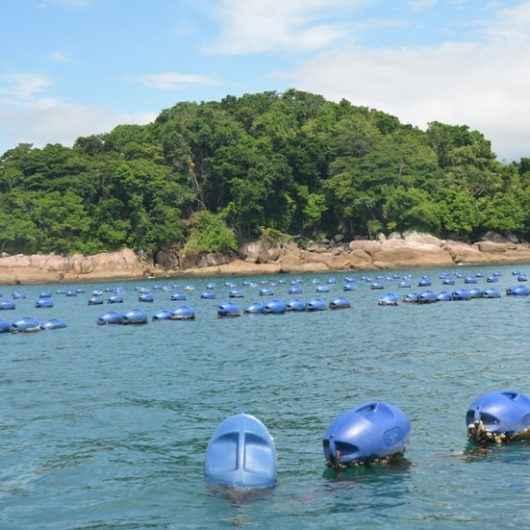 Comunidade da Cocanha, em Caraguatatuba, pode ser transformada em Vila Turística