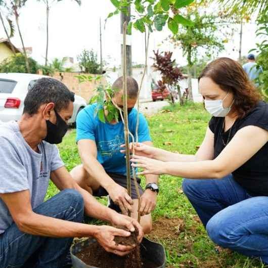 Prefeitura de Caraguatatuba faz plantio de mudas nativas no Jardim Tarumãs