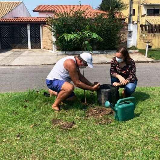 Dia da Árvore: Caraguatatuba já doou 650 mudas de plantas nativas neste ano