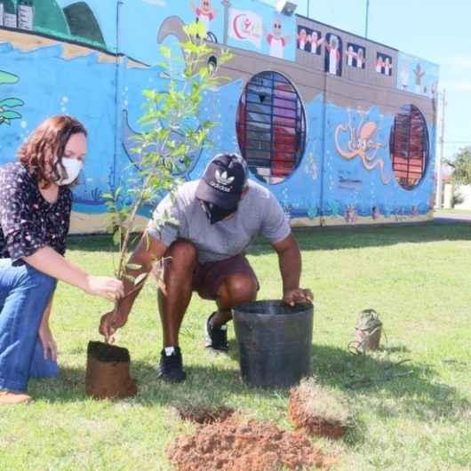 Praça no Porto Novo é beneficiada com 20 mudas de planta nativa